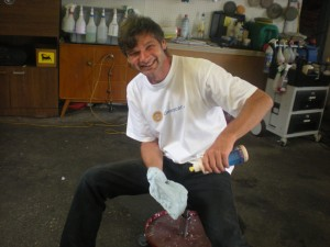 Manfred Asamer, Cleancar